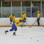 00401_WeekRevOctHockey