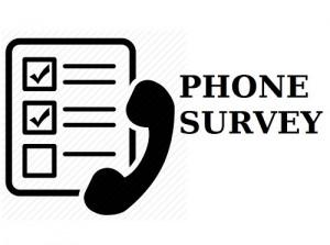07342_PhoneSurveyIcon